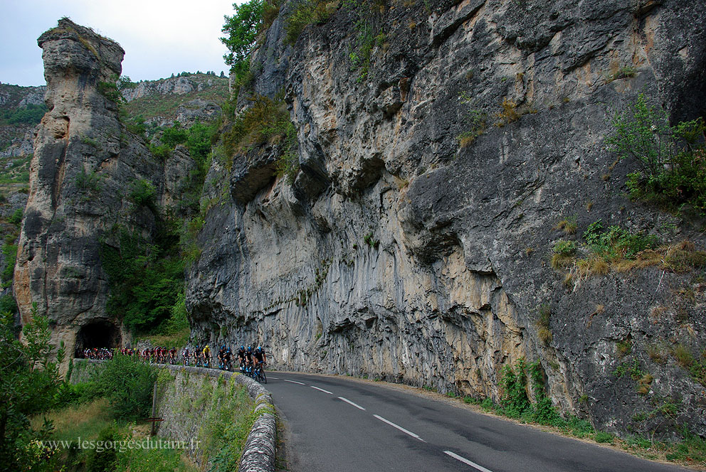 tour gorges du tarn 2015